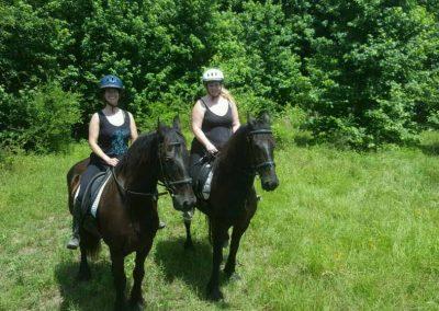 horseback-riding-friesians